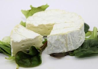 camenbert, fromage de normandie