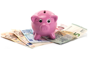 Piggy Bank and Euro Money