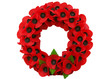 Poppy day great remembrance war world flanders - 60956578