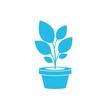 Blue plant icon