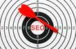 Seo target concept