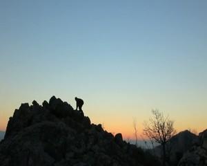 zirve tırmanışı