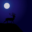 Night Deer Silhouette