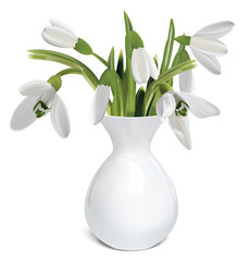 Bouquet of snowdrops in a vase. Vector illustration