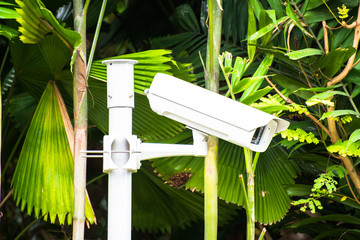 CCTV security camera in the garden background