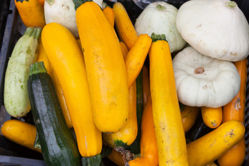 Bunch of different types of squash with selective focus