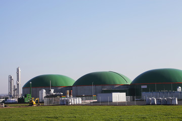 Biogas engineering Agriculture