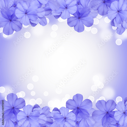 border or background with blue blossom