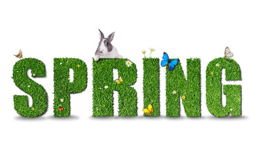 Spring word concept on white background