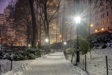 Central Park, New York City at night