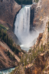 The Lower Falls, Yellowstone.