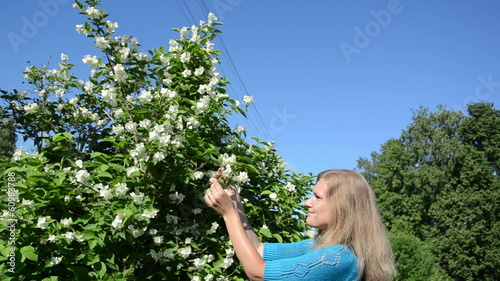 Beautiful blond girl woman in blue pick jasmin bush white blooms