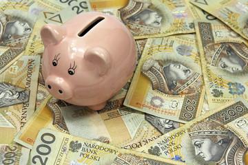 pig bank on polish zloty banknotes