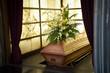 Leinwanddruck Bild - Coffin