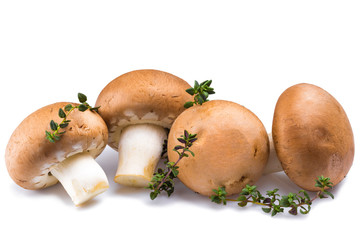 mushrooms with marjoram herb isolated