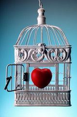 heart in open cage