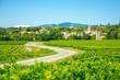 Leinwandbild Motiv Vignes et village en Provence, France