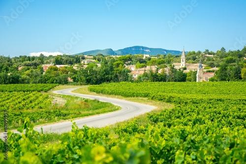 Vignes et village en Provence, France - 60995953