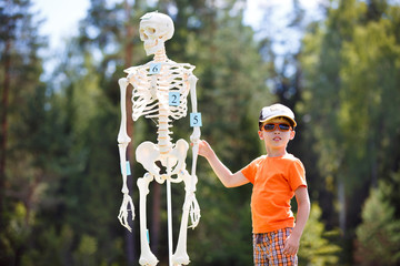 Cute little boy with human skeleton