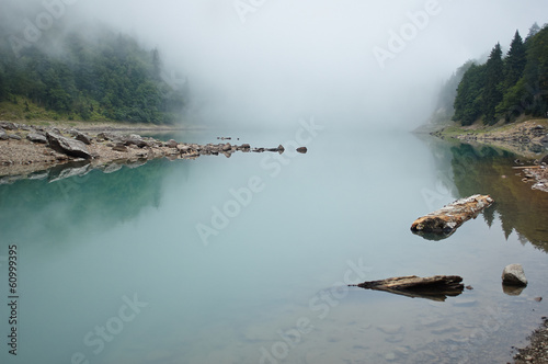 Green lake in fog