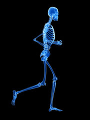 3d rendered illustration - jogger skeleton