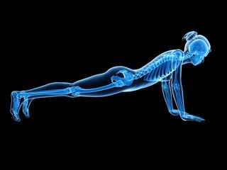 3d rendered illustration - woman doing pushups
