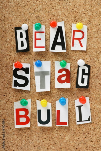 Bull, Bear or Stag Stock Market Terms on a cork notice board