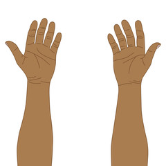 Man hands, vector format