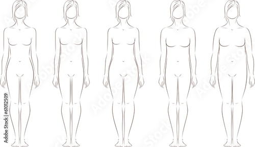 Vector illustration of female figures. Different body types