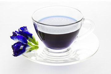 Butterfly pea in cup isolated on white background