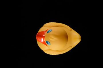 gelbe Badeente - Freisteller schwarz