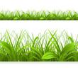 Spring green grass, seamless border