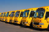An oblique perspective of 8 yellow Arabic school busses