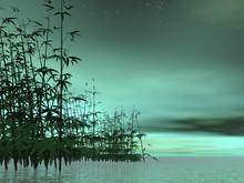 Nature Zen - Rendu 3D