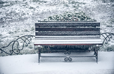 first snow of winter bench