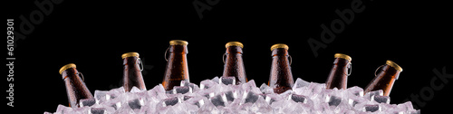 bottles of beer on ice