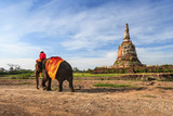 Elephant tour at Ayutthaya Historical Park, Thailand