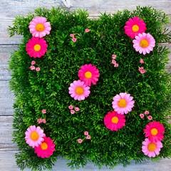 Gras und Blüten