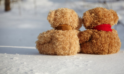 two teddy bears on a snow around each