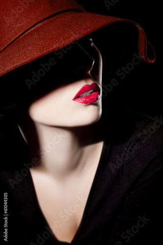 canvas print picture Beautiful woman with hat and red lips
