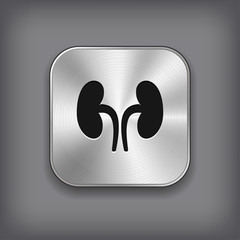 Kidneys icon - vector metal app button