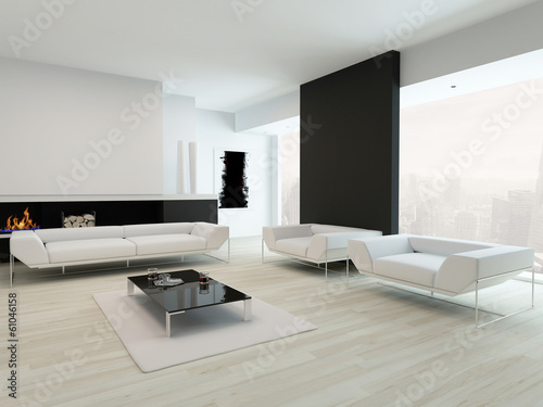 Luxurious black and white living room interior