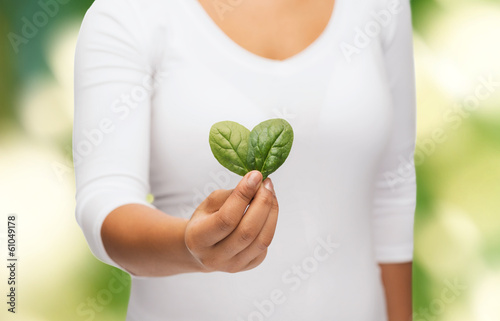 closeup woman hand with green sprout