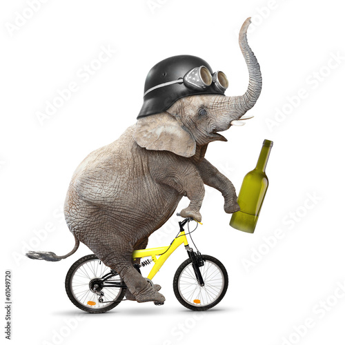Drunken driver riding a bike. Traffic safety concept.