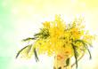 Obrazy na płótnie, fototapety, zdjęcia, fotoobrazy drukowane : Mimosa e narcisi gialli