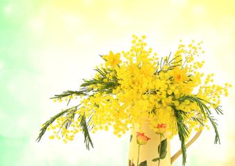 Mimosa e narcisi gialli