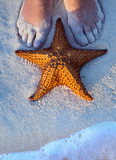 Art Beautiful female legs and starfish on the beach sand