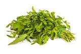 Arugula/rucola  fresh heap leaf on white