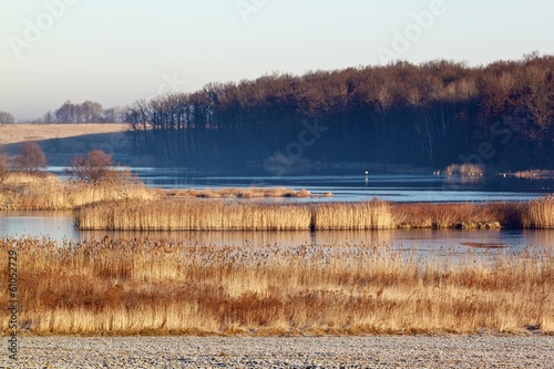Frosty morning landscape with lake