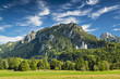 Bavarian Alps of Germany - 61055916